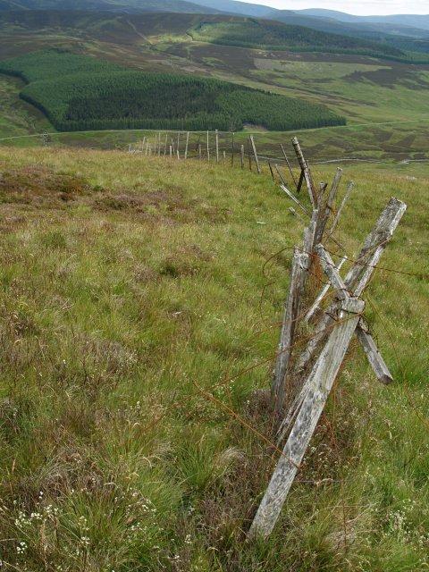 Deer fence, Craigie Broch