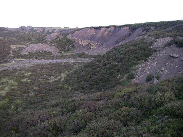 Vegetating quarry and spoil heaps