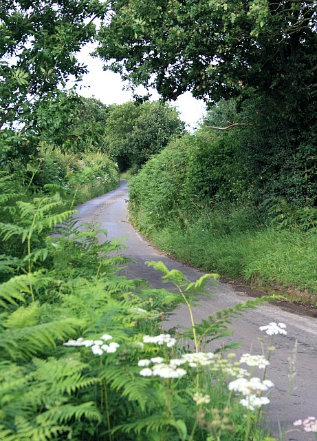 Looking north-east up Tunworth Road