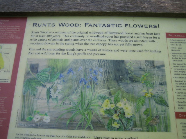 Sign, Runt's Wood near Botolph Claydon