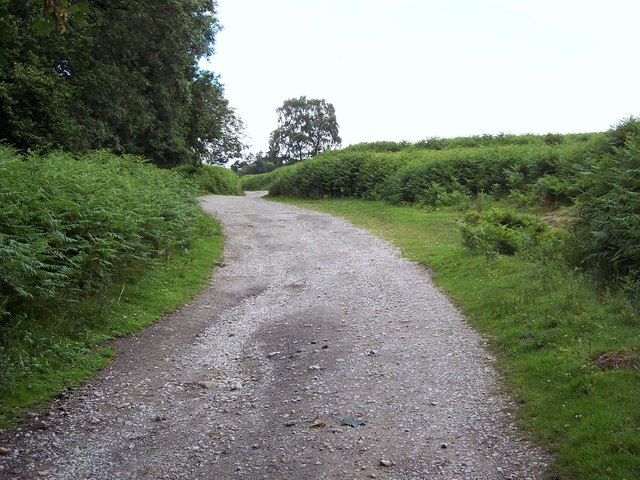 Footpath to Low Mill from Lowna