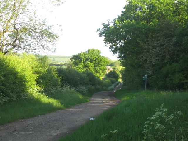 Bridleway near Runt's Wood, Botolph Claydon