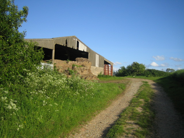 Coppice Lowhill Farm