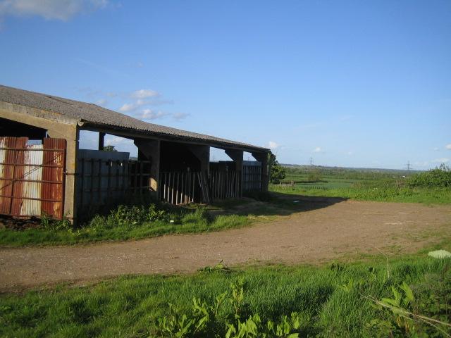 Coppice Lowhill Farm near Botolph Claydon 2