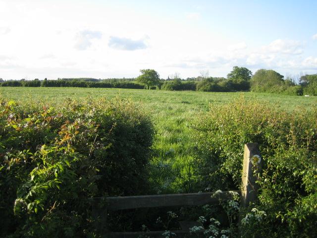 Footpath near Blackmorehill Farm, Middle Claydon