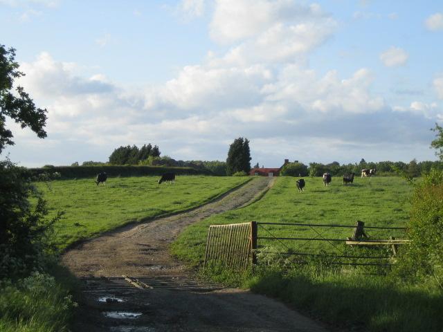 Blackmorehill house