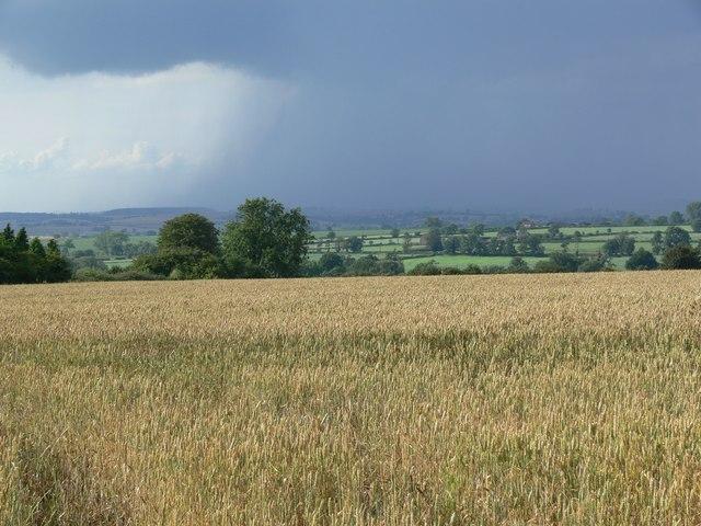 Farmland off South Croxton Road