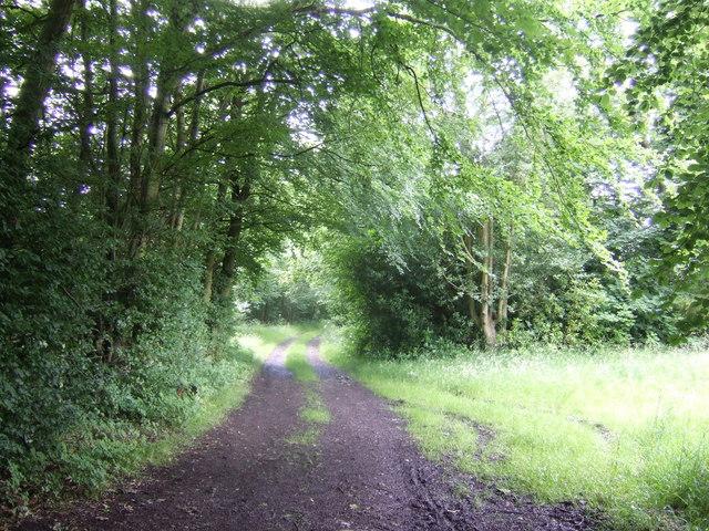 Private road to Milton-Lockhart
