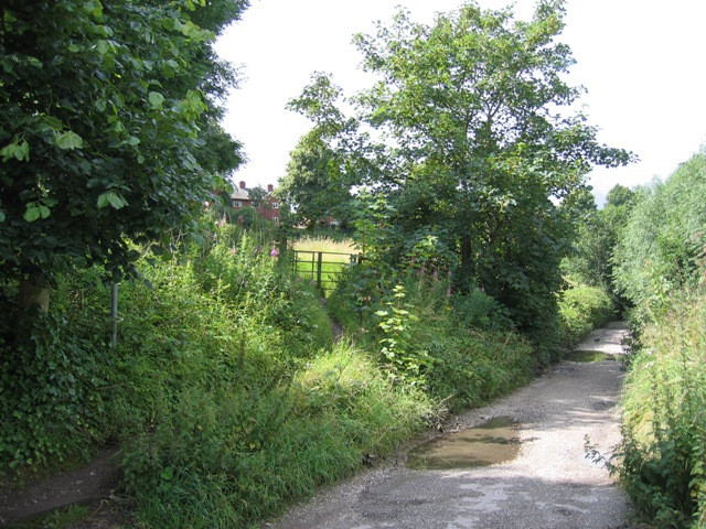 Footpath and Lane near Styelane Croft