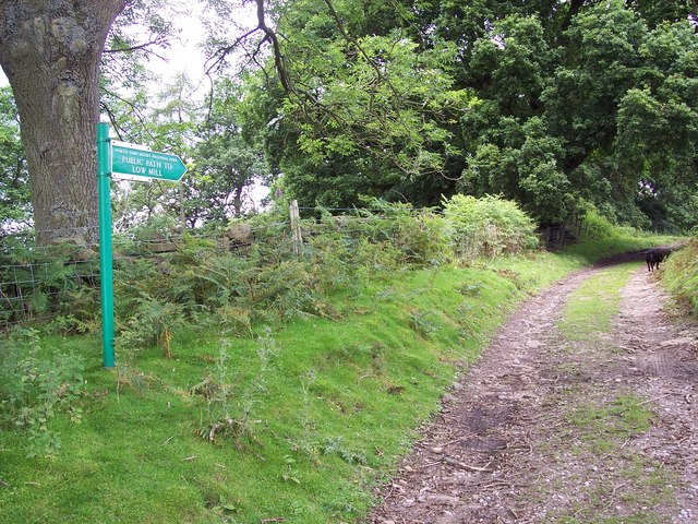 Footpath from Lowna to Low Mill