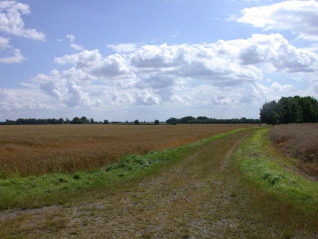 Footpath to East Hatley