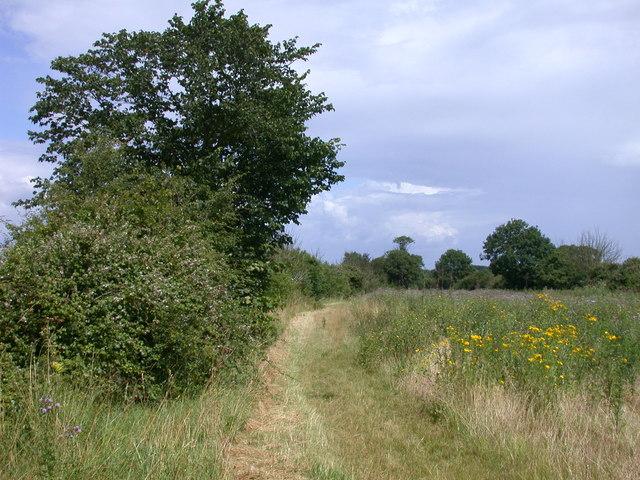 Clopton Way looking towards Arrington