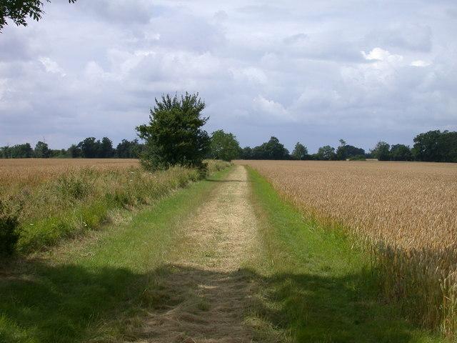 Bridleway to East Hatley