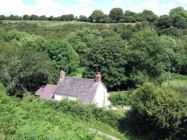 Leafy valley of Afon Brynberian