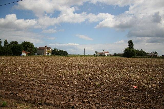 Scrane End farmland