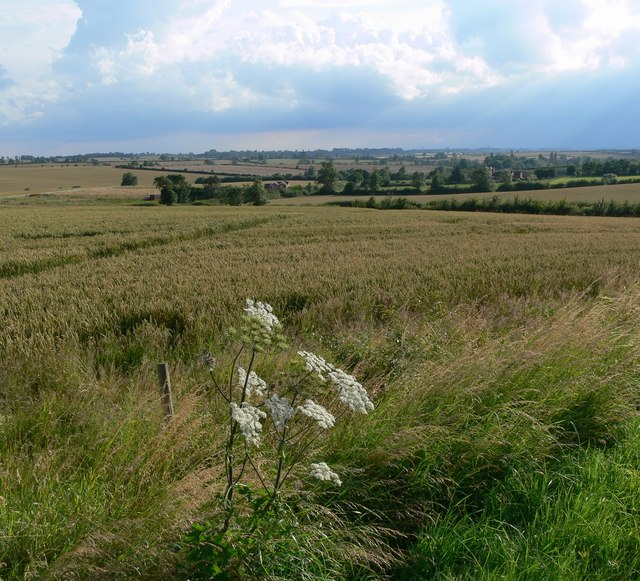 Leicestershire countryside