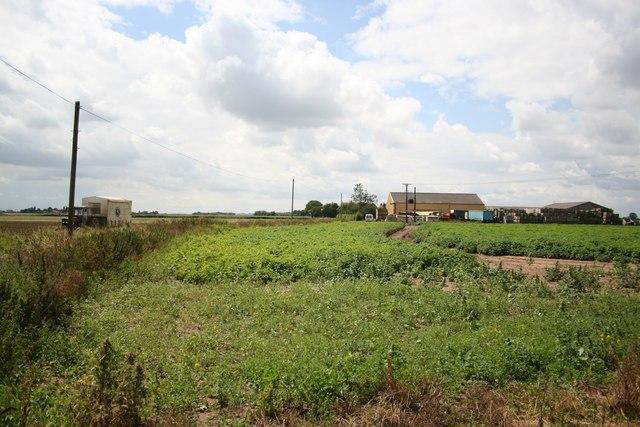 Mill House Farm