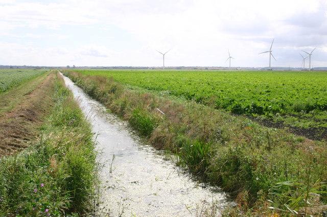 High Fen drain by Cross Drove