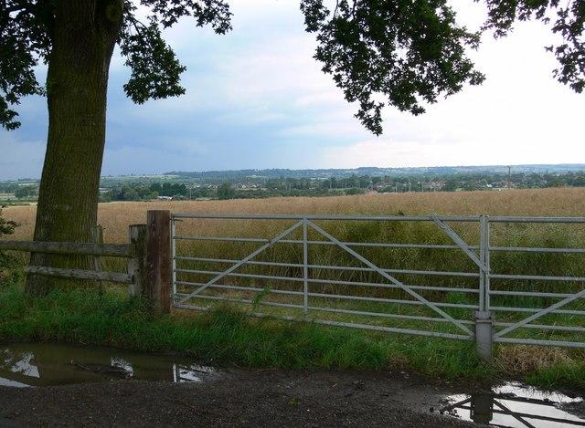 View from Ridgemere Lane
