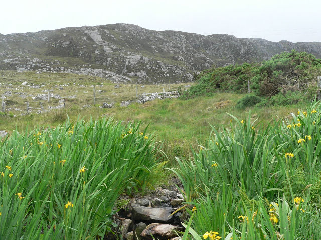 Rough grazing below outcrops of Beinne Ceannabeinne