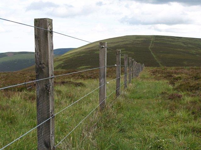 Fence, Bruntshields