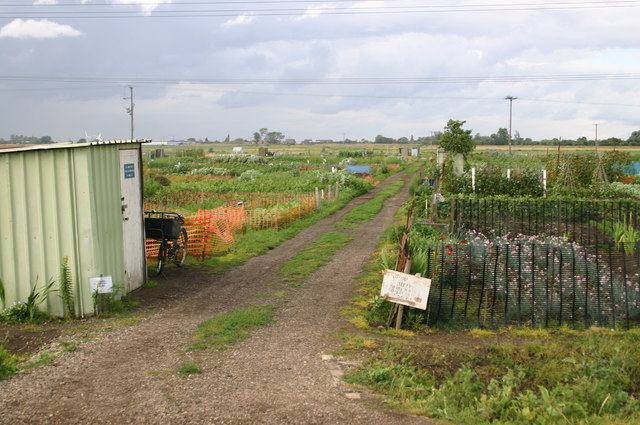 Allotments on Honeysome road