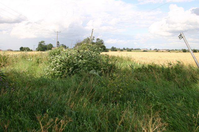 Overgrown public byway off Dykemoor Drove