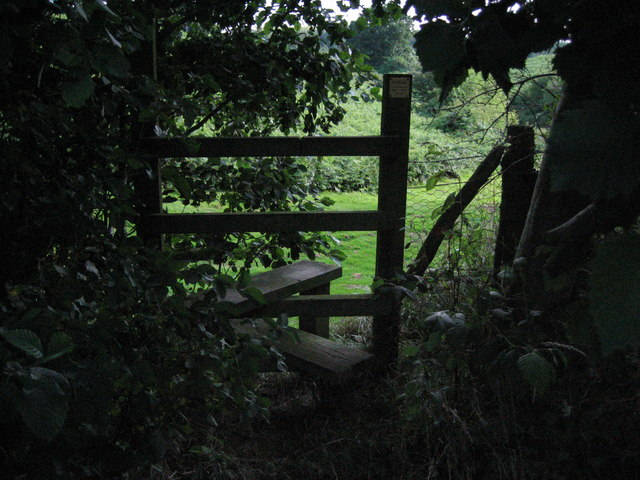 Half-hidden stile near Dodnash Priory Farm