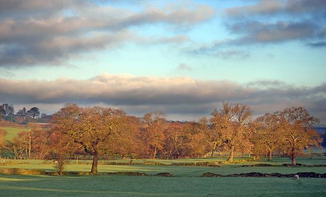 Fields alongside Fenay Beck