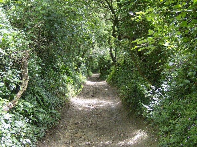 Tennyson Trail descends to Carisbrooke