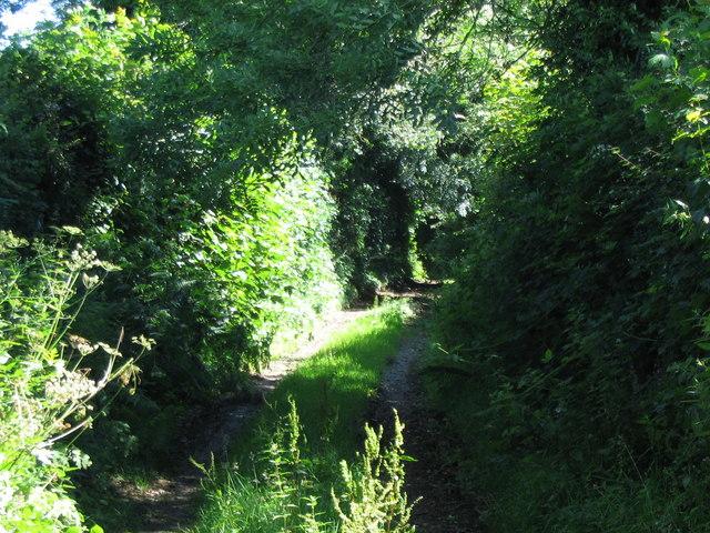 Track near Blakes Farm