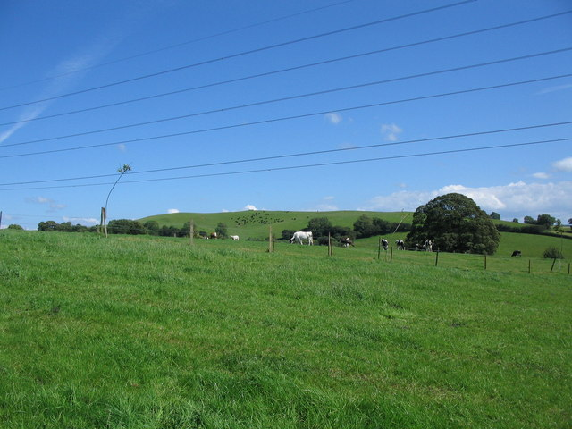 Farmland near Prestleigh