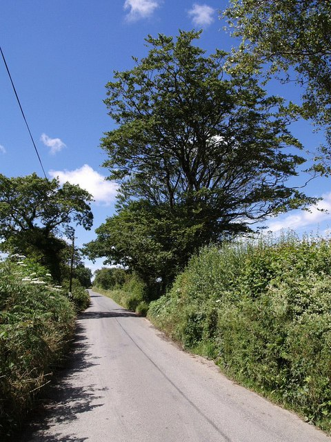 Lane to Week St Mary