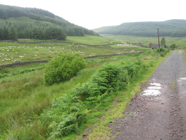 Towards Blairmack
