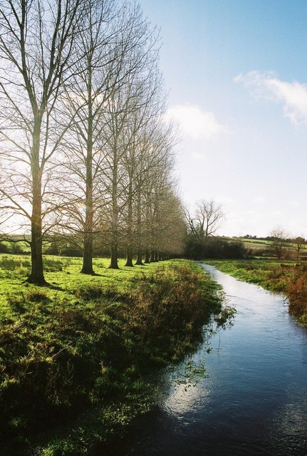 River Allen, Monkton Up Wimborne