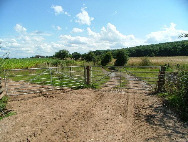 Fields & Gate