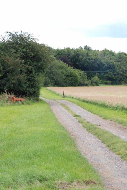 Track on Tenantry Farm