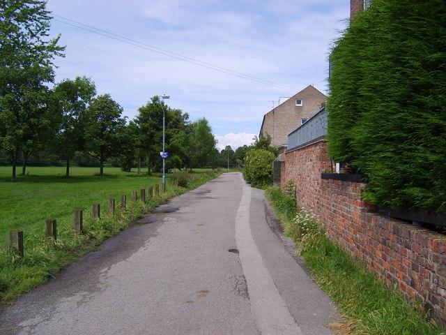 Monk Avenue