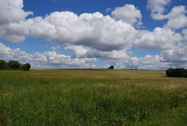 Fields of Braemar