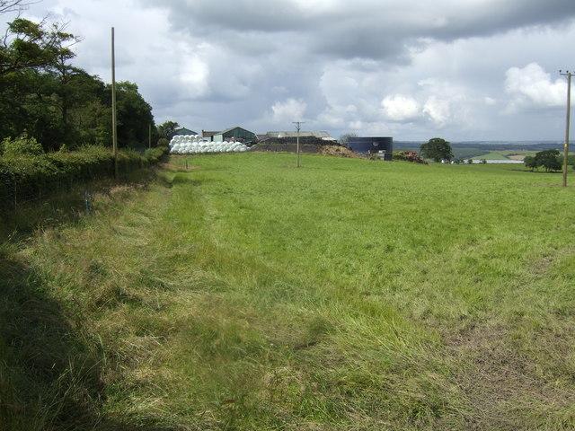 Bushelhead Farm