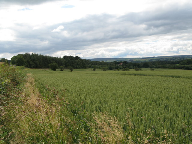 Arable land and woods near Hirst Hill
