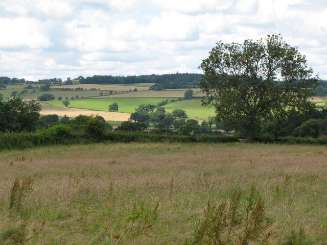 Fields and woods around Linnel Hill