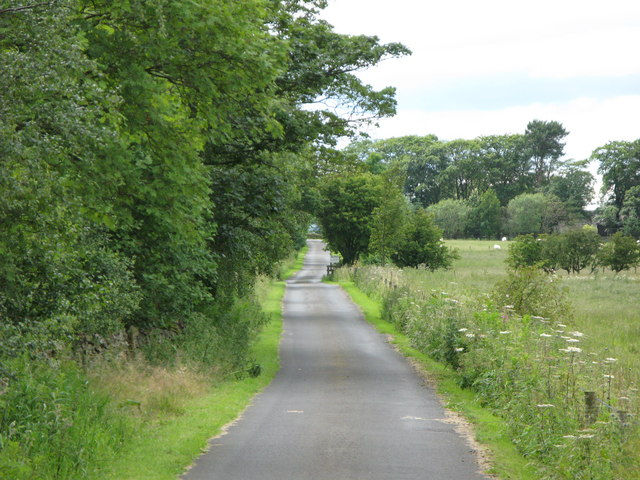 The track to Rye Hill