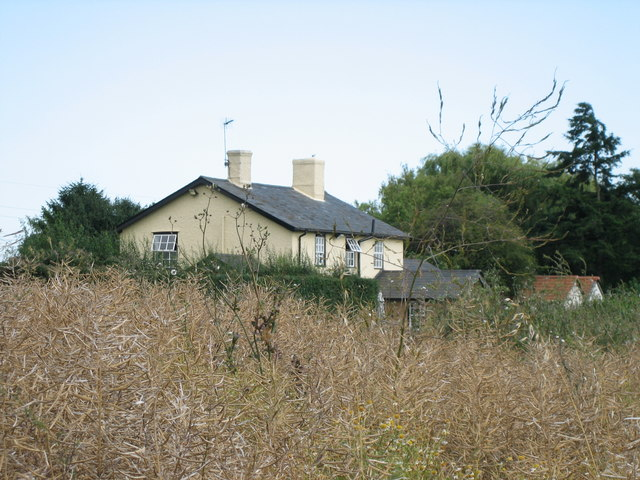 Clay Hall (behind a ripe crop of oil seed rape)