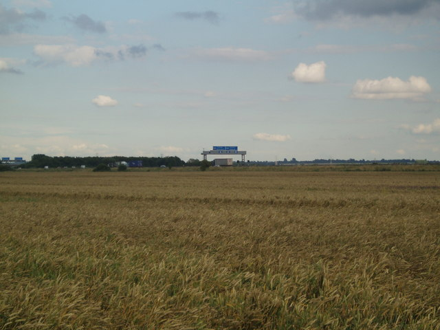 Wheat field and M180 east
