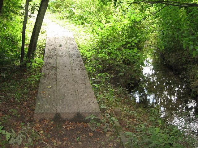 Boardwalk by stream on path between two woods