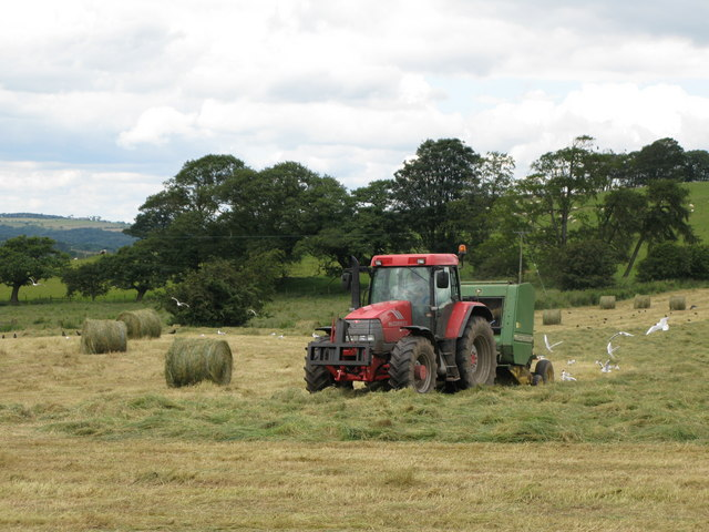 Baling hay on Palm Strothers Farm