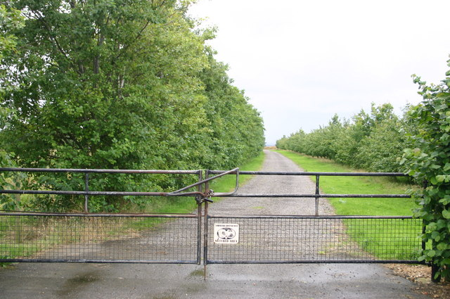 Farm track near to Wood Farm on Bluntisham Heath Road