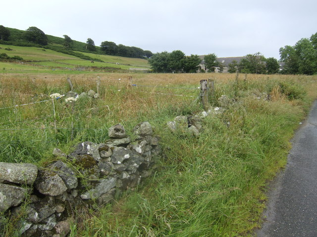 Tumbledown wall near Lowhillside