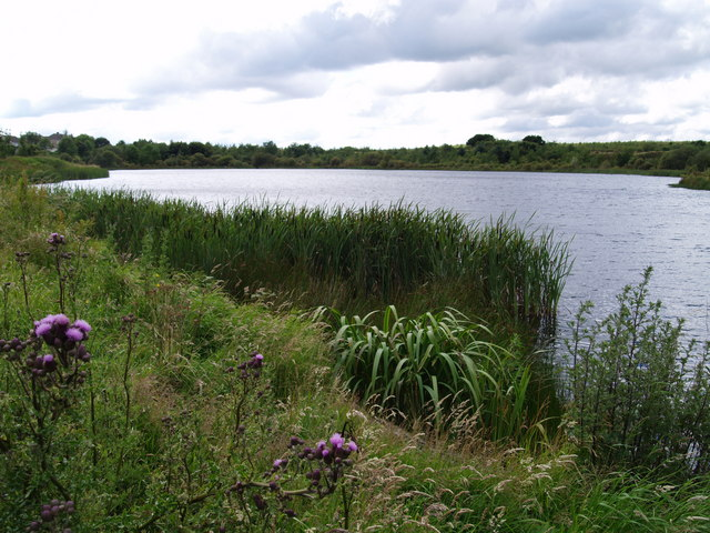 Pond taken from Little Lane